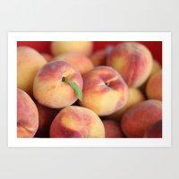 Peaches.  Art Print