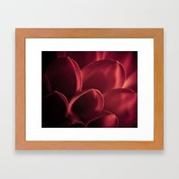 Red Dahlia Framed Art Print