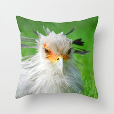 Sagittarius serpentarius 27 Throw Pillow