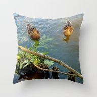 Ducks In Pont Throw Pillow