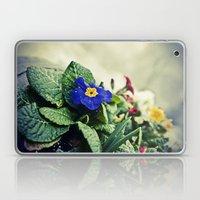 The Flower Pot Laptop & iPad Skin