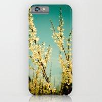 Rapturous iPhone 6 Slim Case
