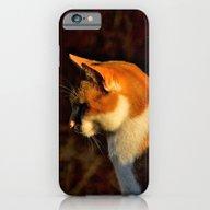 Orange Sherbet Cat iPhone 6 Slim Case