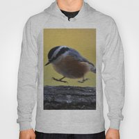 Red Breasted Nuthatch - … Hoody