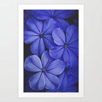 Purple/Blue Art Print