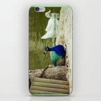 Outer Freedom iPhone & iPod Skin