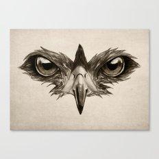 Hawk Eye Glare Canvas Print