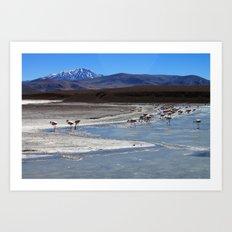 Volcanic Flamingos Art Print