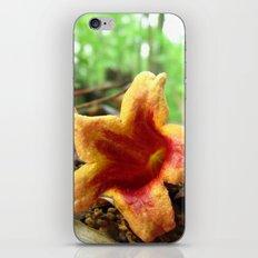 Nature Rays iPhone & iPod Skin