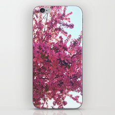 Apple Blossom-2014 iPhone & iPod Skin