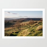 Trees on a hillside at sunset. Upper Padley, Derbyshire, UK. Art Print
