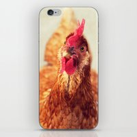 chicken iPhone & iPod Skin