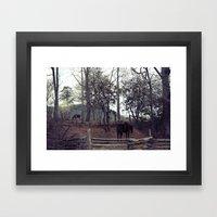 2 horses Framed Art Print