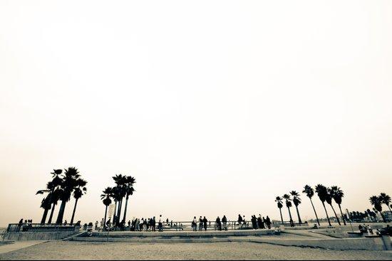 Venice Beach Skate Park Art Print