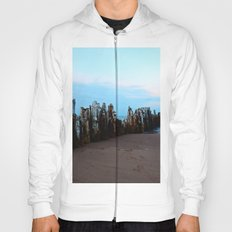 Pillars of the Past Hoody