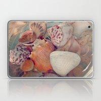 Shells Sans Sand Laptop & iPad Skin