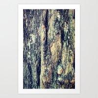 Old Tree Chapel Hill Art Print