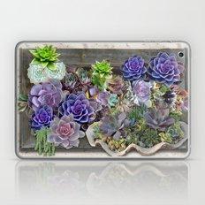 South Africa's Succulent… Laptop & iPad Skin