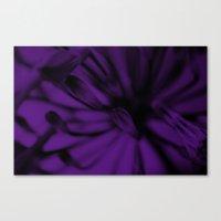 Tinted Iris [Purple] Canvas Print