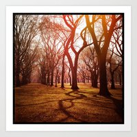 'CENTRAL PARK TANGLE' Art Print