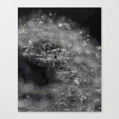 silver burst Canvas Print