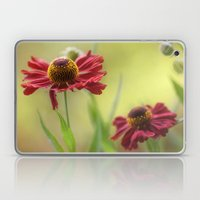 Heleniums Laptop & iPad Skin