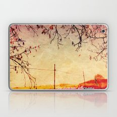 Lazy Summer afternoons Laptop & iPad Skin