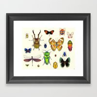 Insecta Framed Art Print