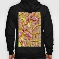 Vibrant Abstract Amaryll… Hoody