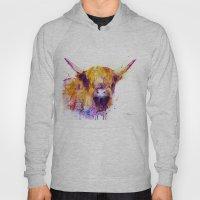 Highland Cow  Hoody