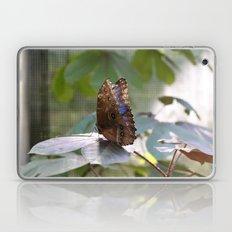 Butterfly Blue Laptop & iPad Skin