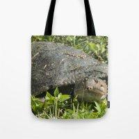 Soft Back Turtle  Tote Bag