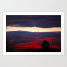 separation leaves ember in the sunsets Art Print