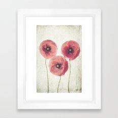 Vintage Poppies  Framed Art Print