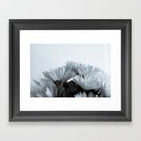 What is a flower without colour Framed Art Print