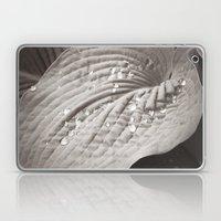 Secret Garden ~ No.9 Laptop & iPad Skin