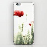 Poppy Poppies Mohn Mohnblume iPhone & iPod Skin