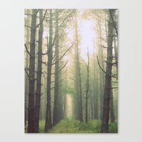 Obscurity Canvas Print