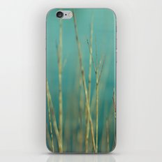 Twig iPhone & iPod Skin