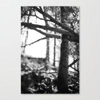 Nature's Grasp. Canvas Print