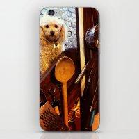 My dear Poodle iPhone & iPod Skin