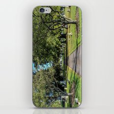 Cemetery Entrance iPhone & iPod Skin
