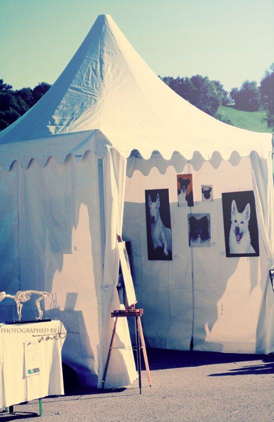 tents Art Print