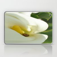 Beautiful Calla Flower On Green Natural Background Laptop & iPad Skin