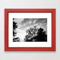 Black Trees Hopeful Sky Framed Art Print