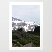 Washington Summer Art Print