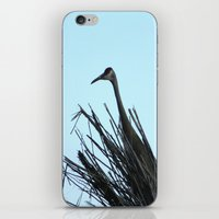 Crane Hiding iPhone & iPod Skin