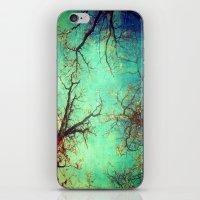 Dance Of The Trees iPhone & iPod Skin