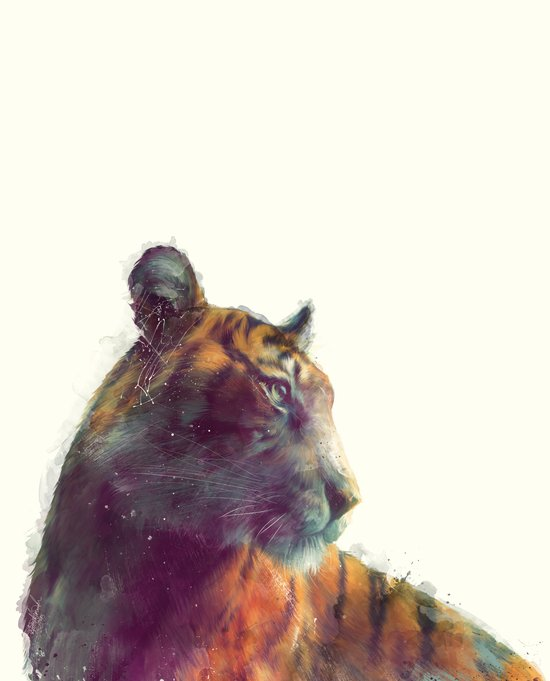 Tiger // Solace Canvas Print