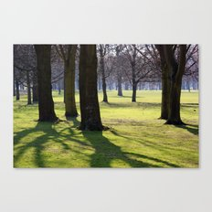 2009 - Park (High Res) Canvas Print